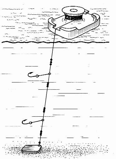 Техника и тактика ловли судака на жерлицу