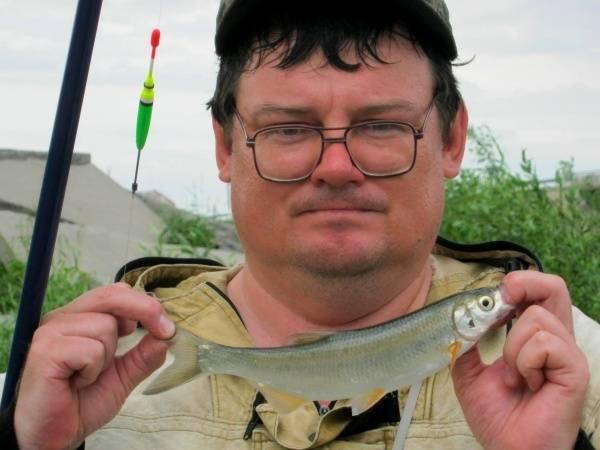 Морда для ловли рыбы: законна ли рыболовная мордушка? особенности рыбалки со снастью. с какой приманкой рыбачить на карася и другую рыбу?