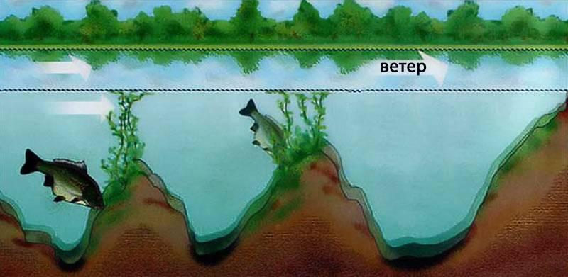 Что такое бровка и другие загадки речных глубин