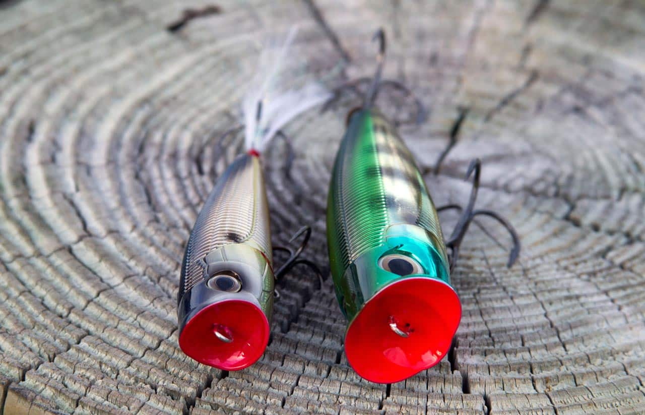 Попперы на щуку: как выбрать, как ловить, какие самые уловистые. топ-5 лучших попперов на щуку, рейтинг с фото