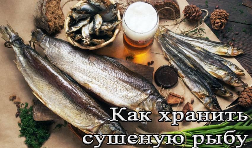 Как правильно вялить рыбу по госту? холодная сушка рыбы