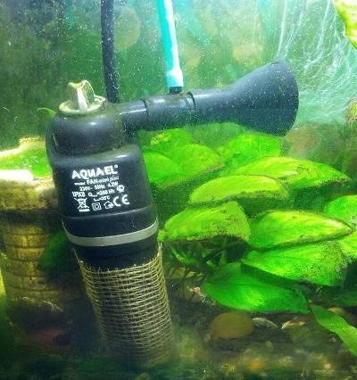 Как чистить аквариум с рыбками в домашних условиях: советы, видео