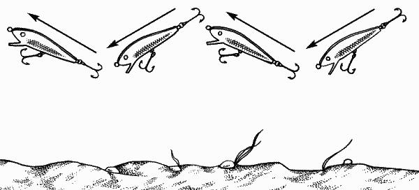 Ловля на воблер для начинающих: техника, способы проводки воблеров, джиговых и попперов