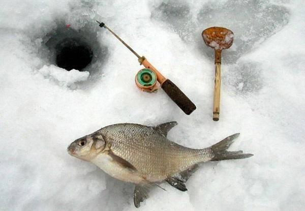 Ловля леща на мормышку зимой и летом | какая мормышка лучше, фото и видео обзоры
