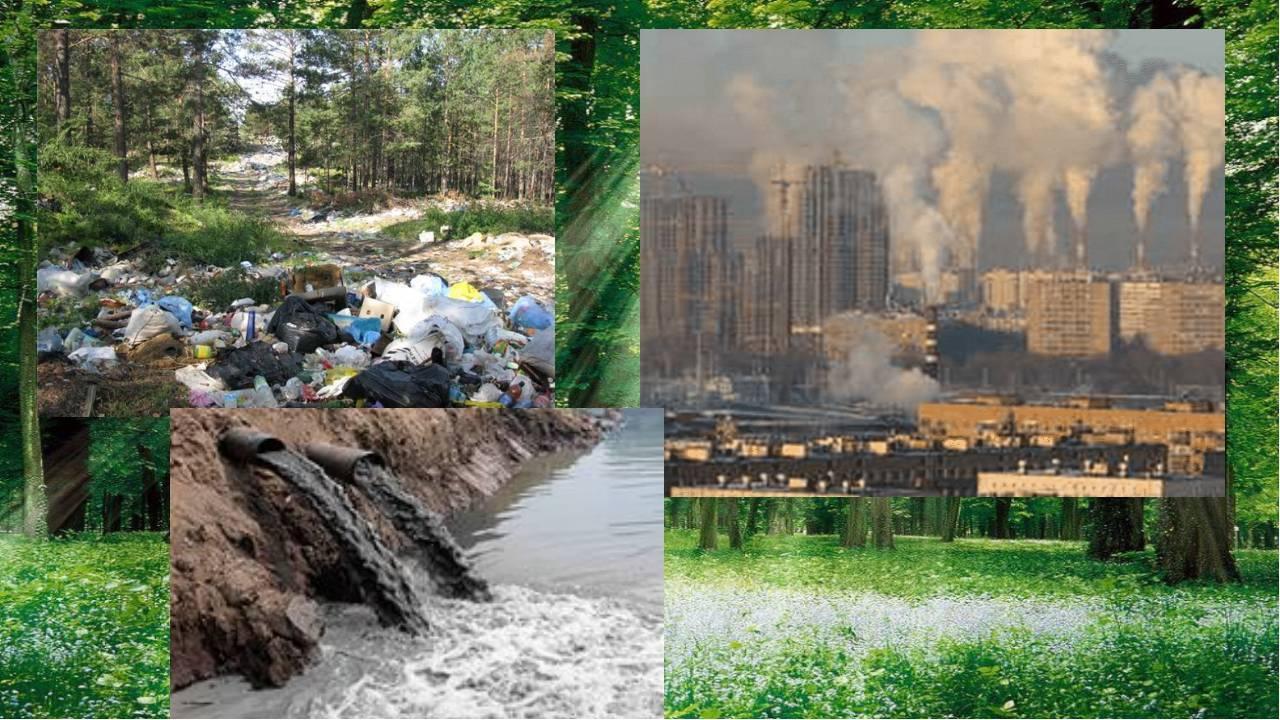 Население новороссийска. экология, районы, экономика города