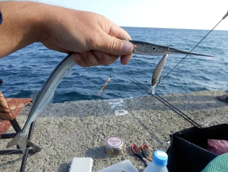 Рыбалка на черном море с берега – все о рыбалке