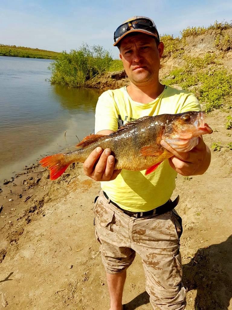 Рыбалка на ахтубе с комфортом - рыболовная база трёхречье