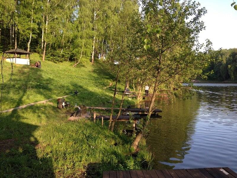 Отчет о рыбалке. прио лагуна . 18 августа 2020 года