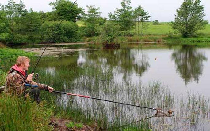 Ловля карася на реке: выбор места, снастей, прикормки и наживки | рыбных дел мастер | яндекс дзен