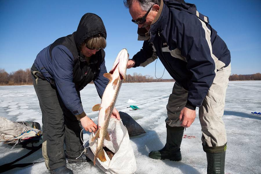 Где сверлить лунки на зимней рыбалке и как искать рыбу зимой - читайте на сatcher.fish