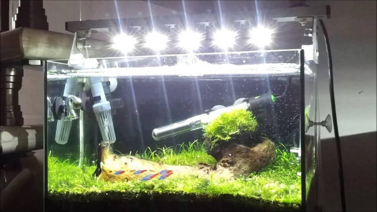 6 типов аквариумных ламп