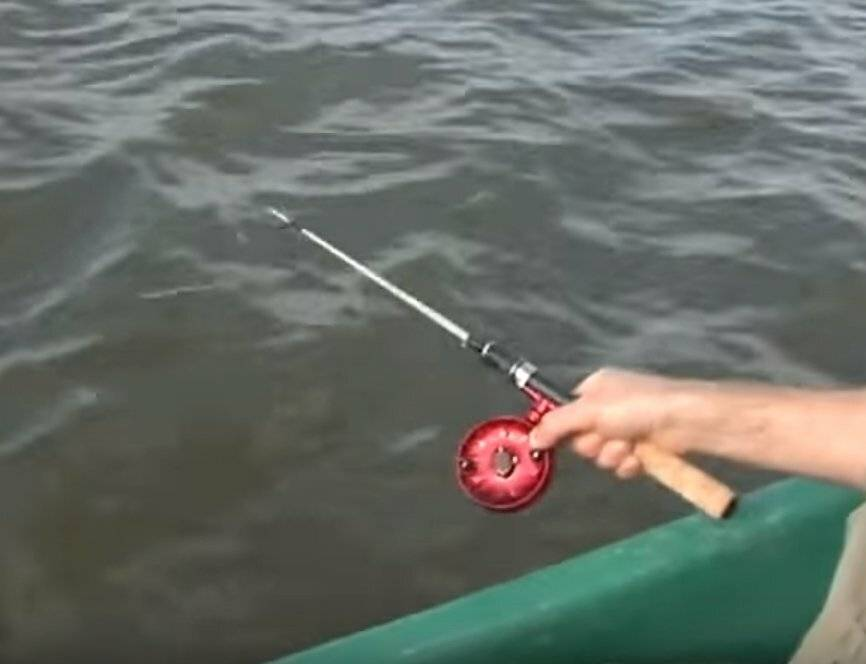 Как ловить судака на живца: способы и нюансы рыбалки