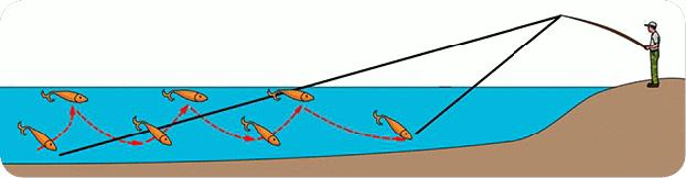 Как ловить на блесну: виды, оснащение спиннинга, проводки