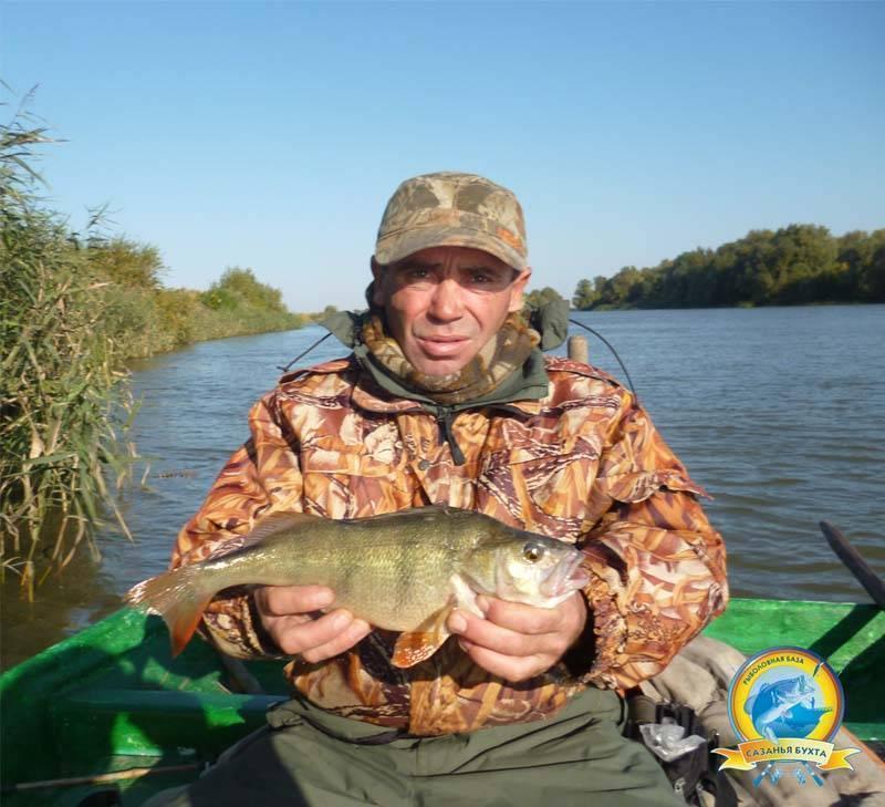 Рыбалка в одинцовском районе 2017 платная и бесплатная