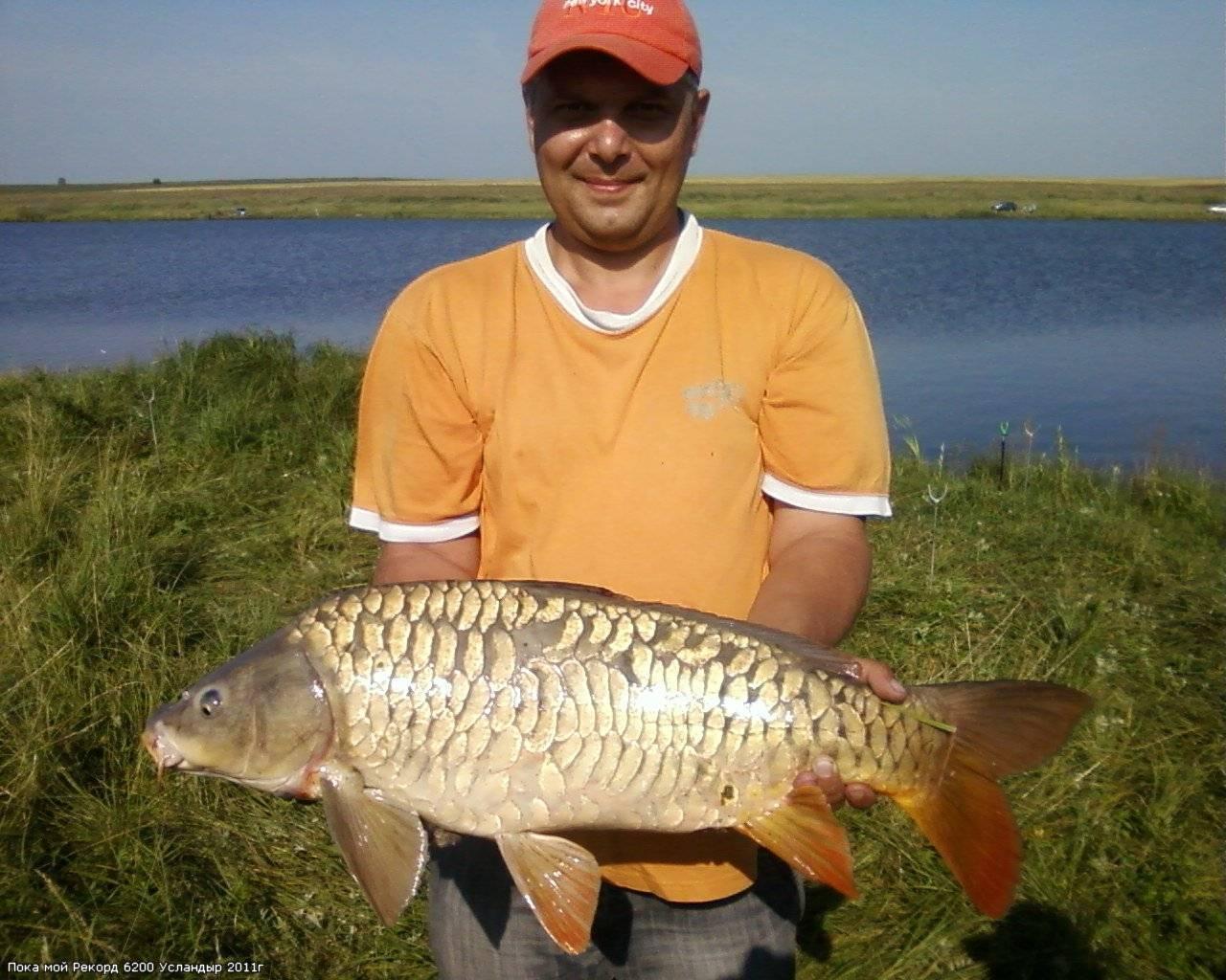 Рыбалка в чувашии уха тв — про рыбалку, рыбаки чувашии уха тв.