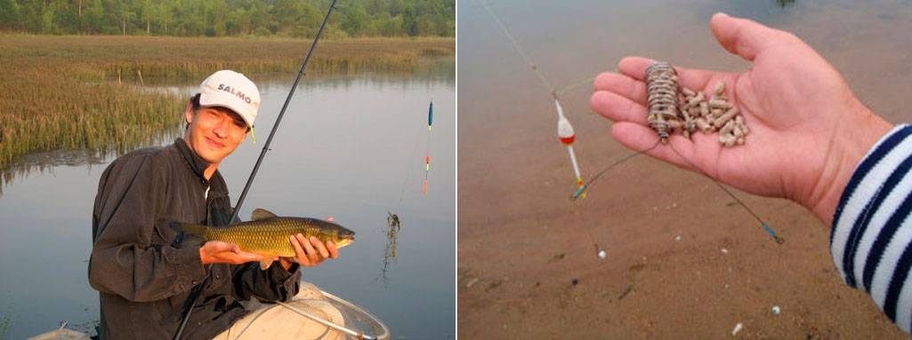 Ловля белого амура на поплавочную удочку - на рыбалке!