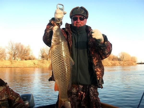 Рыбалка на ахтубе: особенности ловли рыбы на реке