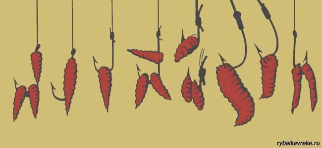 Что делать, если закончился червь? альтернативные виды насадки