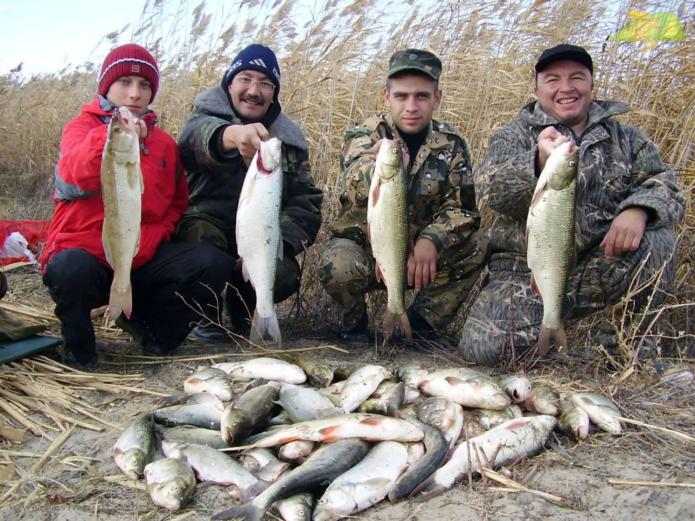 За 10 лет только в одном регионе казахстана выросла популяция рыбы. почему истощаются рыбные запасы? - informburo.kz