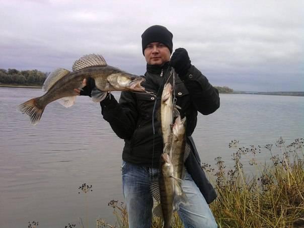 Бесплатные водоемы для рыбалки в подмосковье