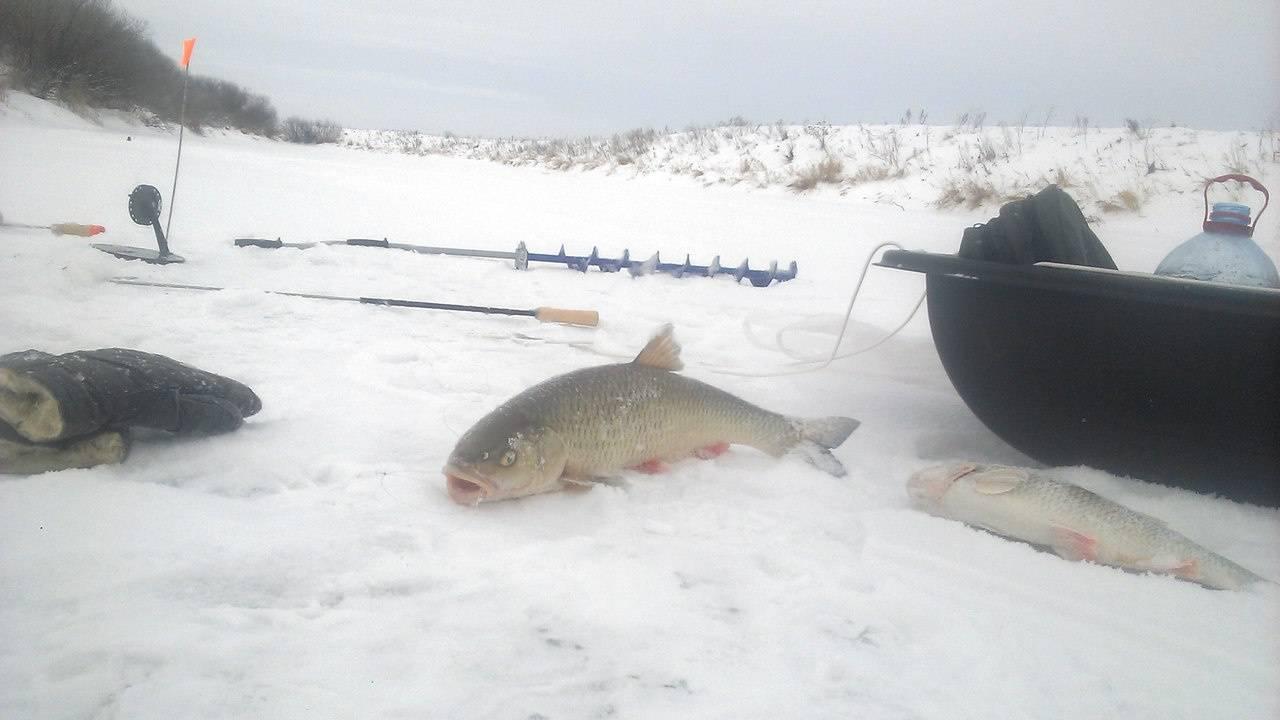 Рыбалка в кирове и кировской области зимой и в другие сезоны года