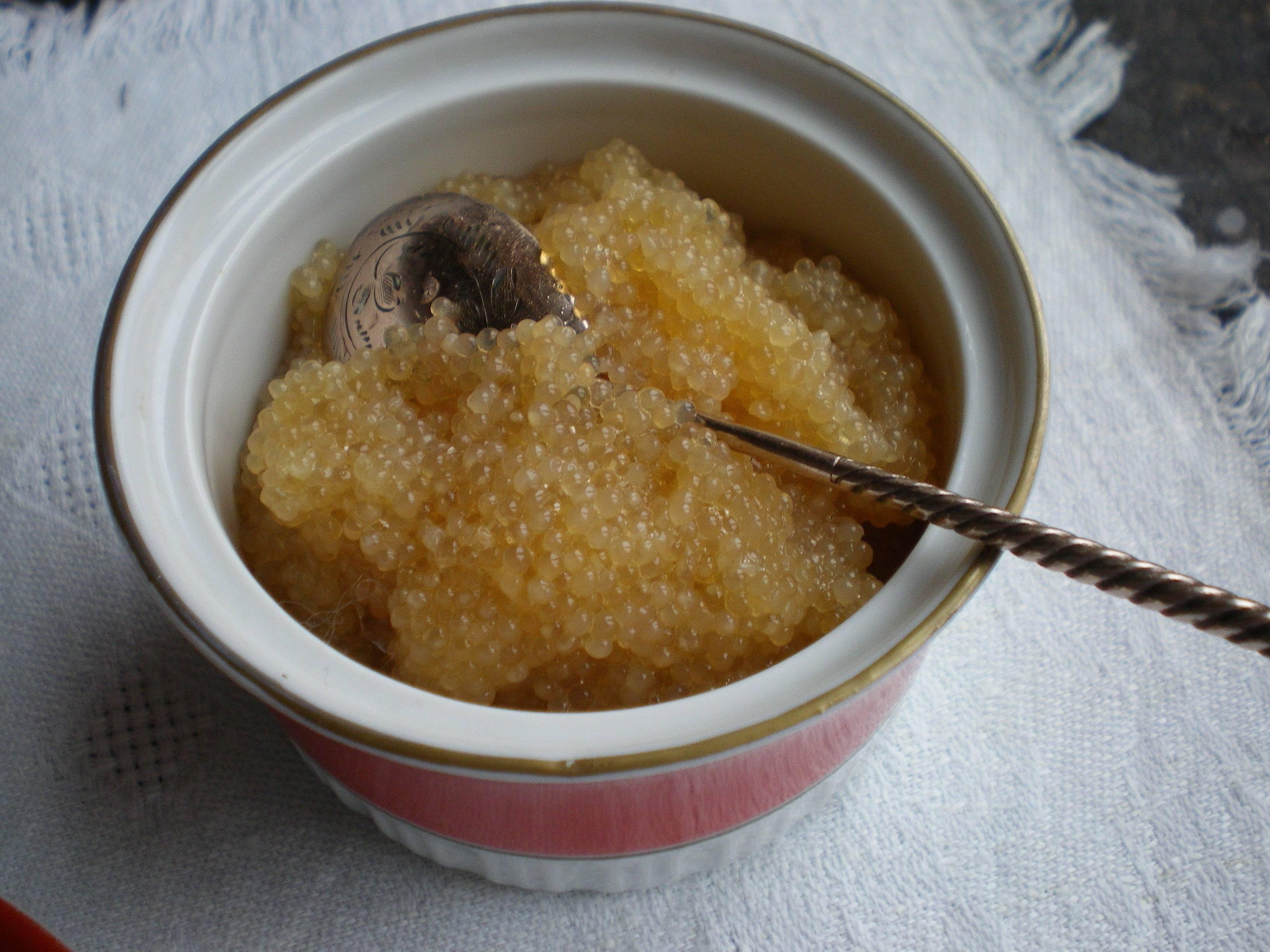 Как засолить икру щуки в домашних условиях по пошаговому рецепту с фото