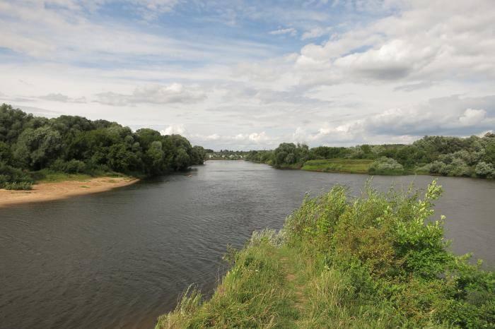 Река городня — идеальное место для рыбалки на юге москвы