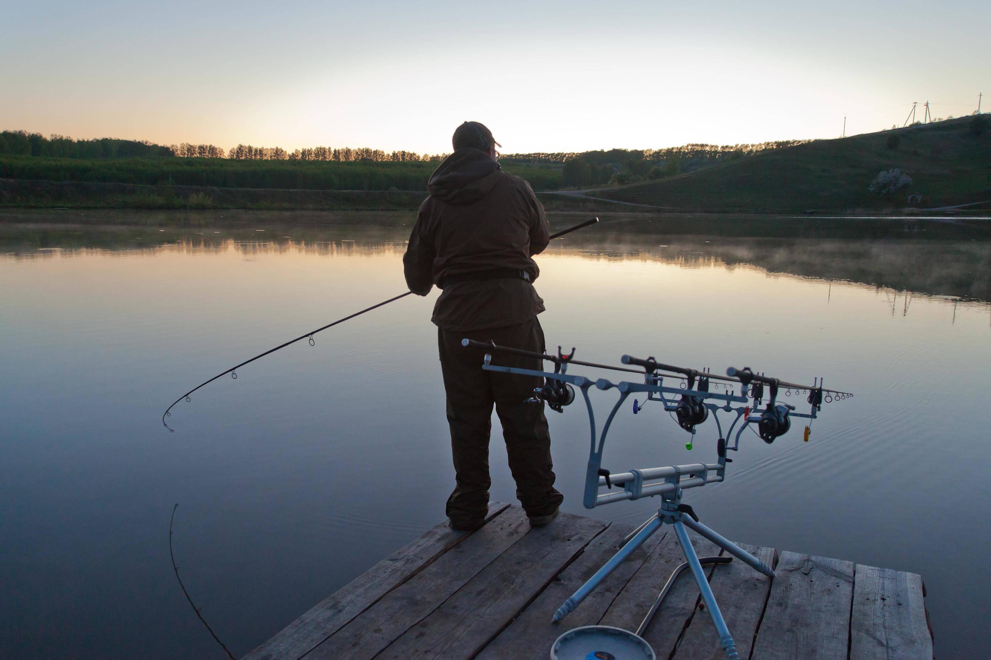 Рыбалка в тверской области 2020: рыбалка на волге, запрет, платная рыбалка