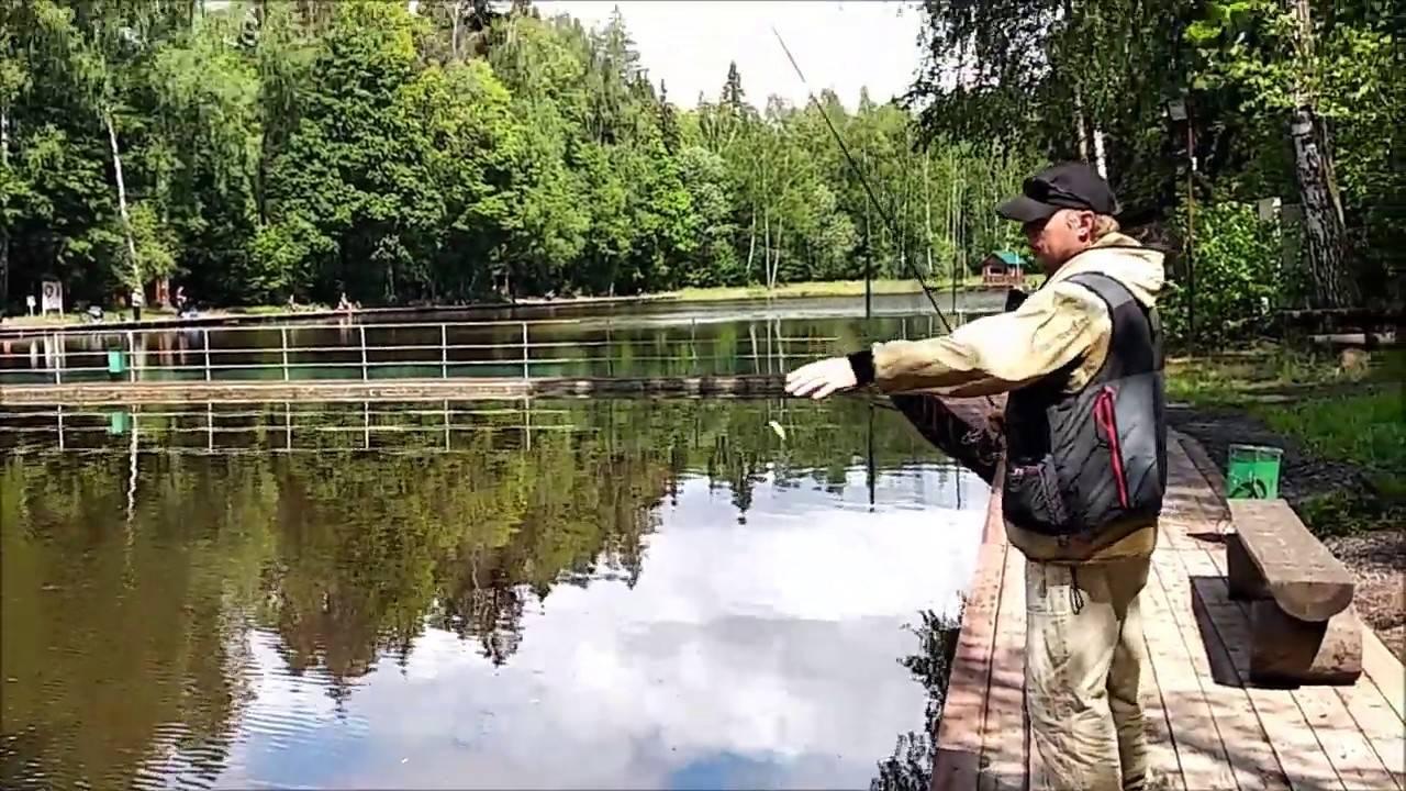 """Рыбное хозяйство """"клёвое место"""" в посёлке лосиный остров - отзывы и видеообзор"""