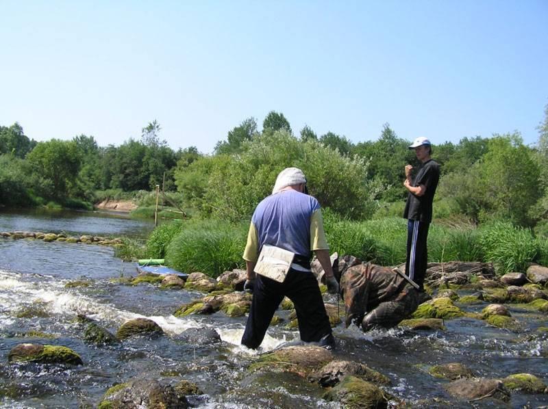 Шелонь (река) википедия