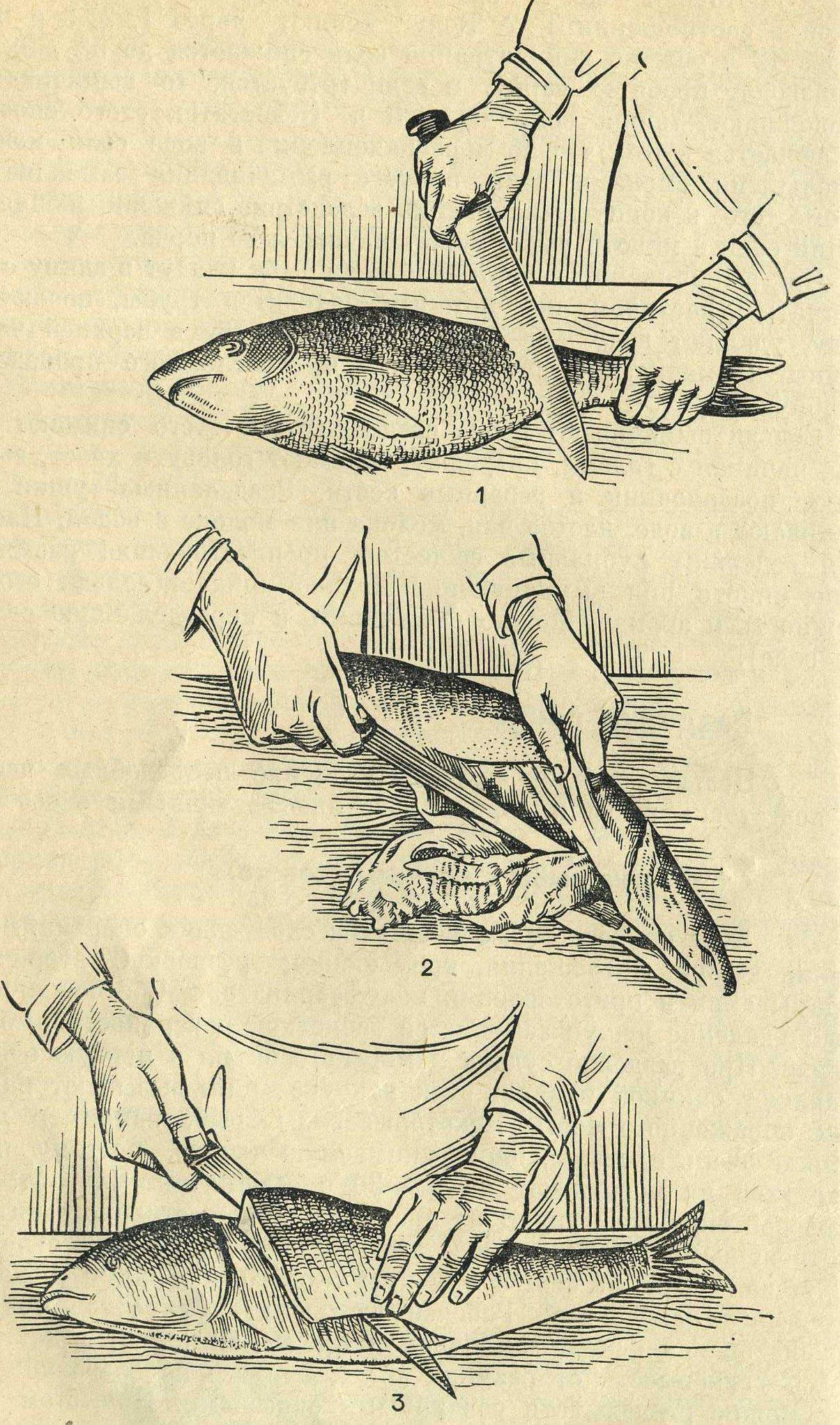 Как почистить рыбу от чешуи быстро