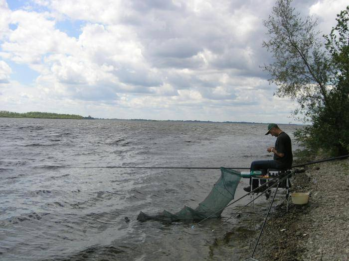 ✅ дубна места для рыбалки - danafish.ru