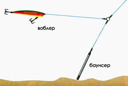 Как ловить на воблер с берега или лодки: техника проводки и другие секреты