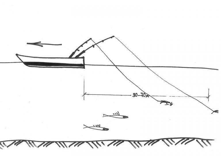 Воблеры для троллинга на судака: рейтинг лучших приманок, рыбалка в июне, ночью, секреты