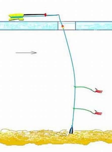Особенности оснастки зимней поплавочной удочки для ловли плотвы