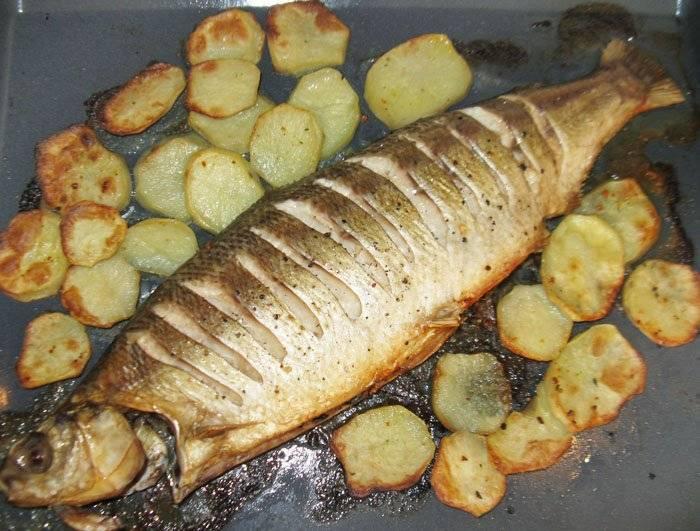 Рецепты приготовления омуля: как приготовить блюда в духовке или на сковороде