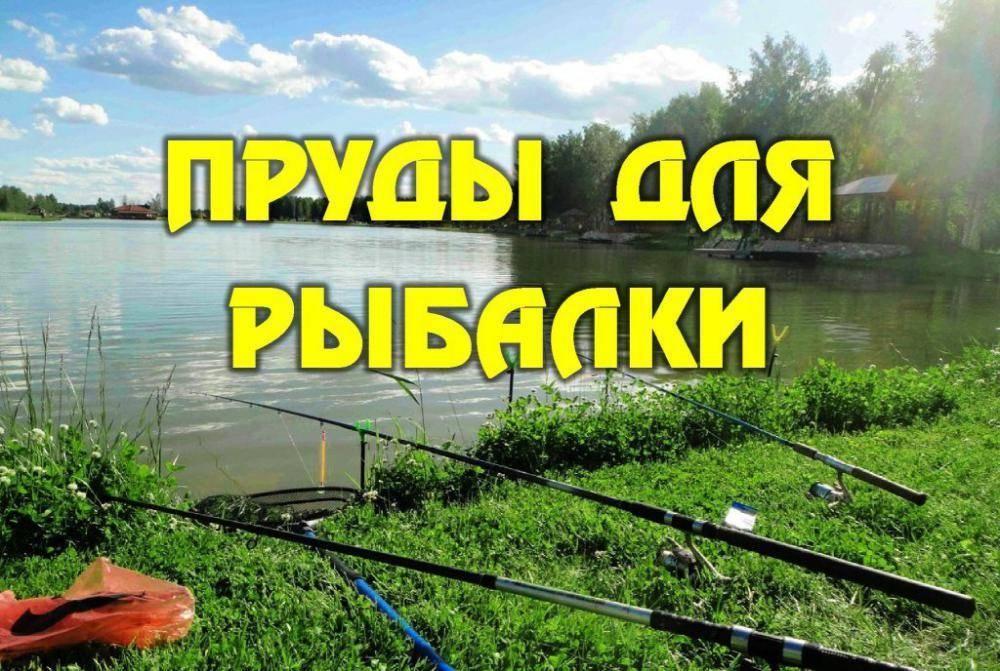 Рыболовные базы в волоколамском районе на карте: рейтинги и отзывы на лучшие рыболовные базы волоколамского района 2020