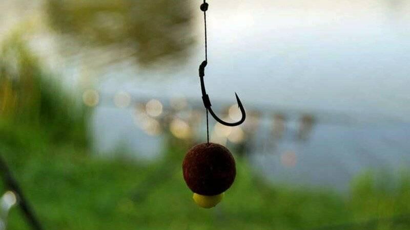 Ловля тарани осенью - основные приемы, снасти, наживка