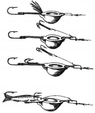 Эффективные способы ловли ленка на мыша и блесну
