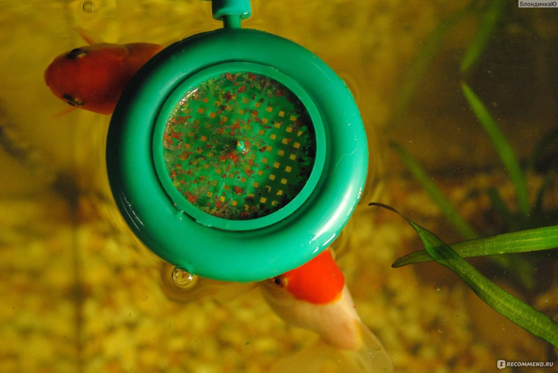 Автокормушка для аквариума:плюсы,минусы,как выбрать?
