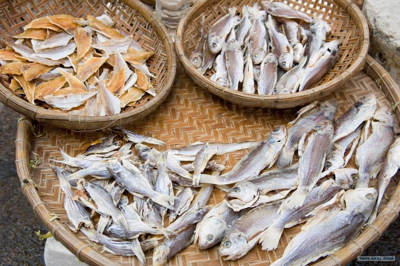 Вобла — пищевая ценность, полезные свойства и калорийность