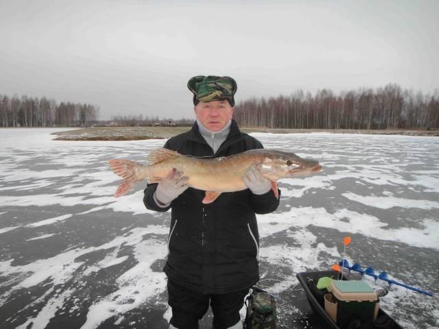 Ихтиолог — рыбалка в Подмосковье. Наши отзывы и фото рыболовной базы в Волоколамске