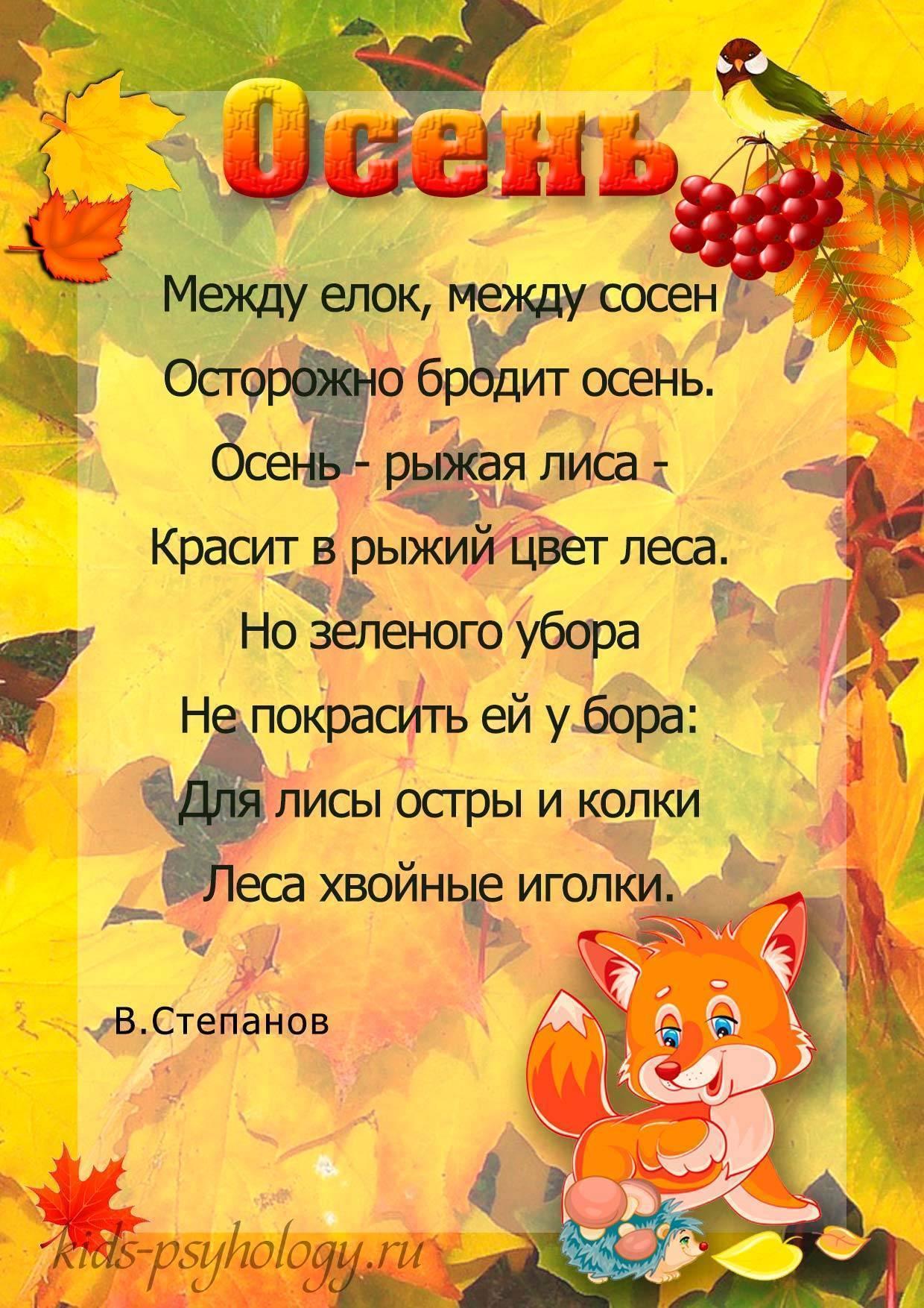 Короткие стихи про осень для детей | мама и малыш
