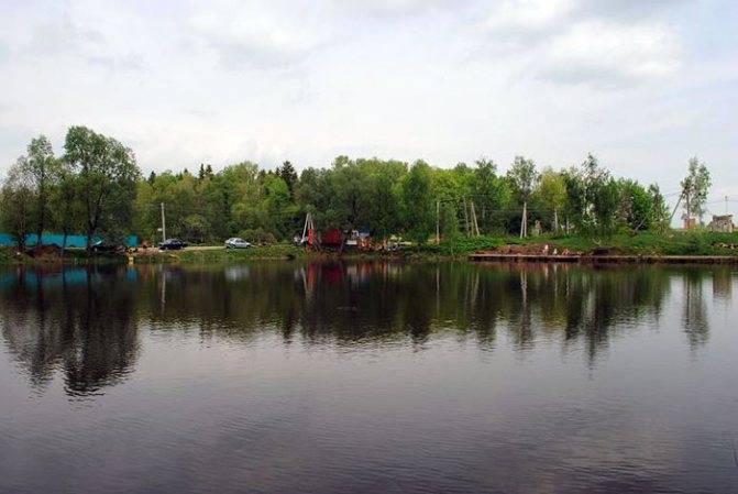 """Обзор платной рыбалки """"три пескаря"""" — цены, услуги, правила   lovitut.ru (рыбалка и бильярд)   яндекс дзен"""