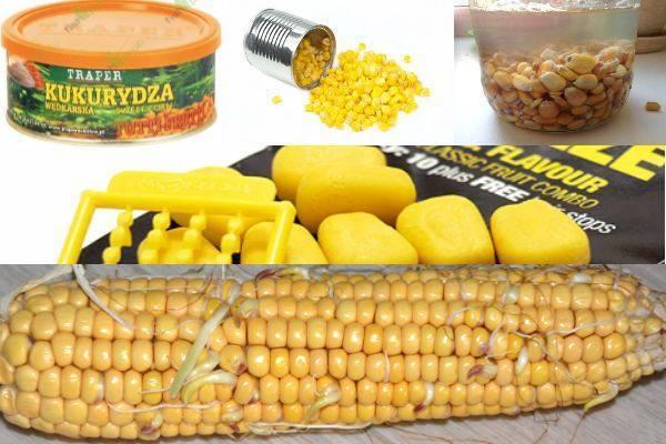 Ловля карпа на кукурузу - как приготовить кукурузу, насадить на крючок видео
