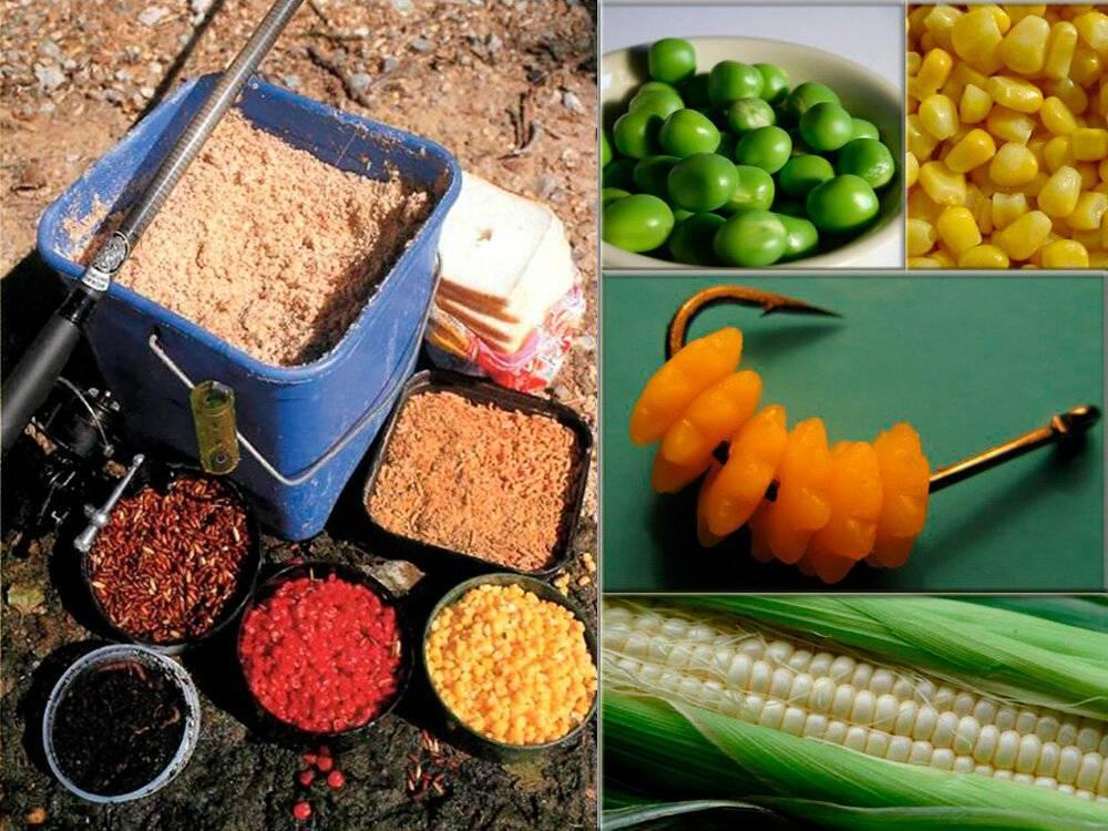 Сколько варить кукурузу молодую?