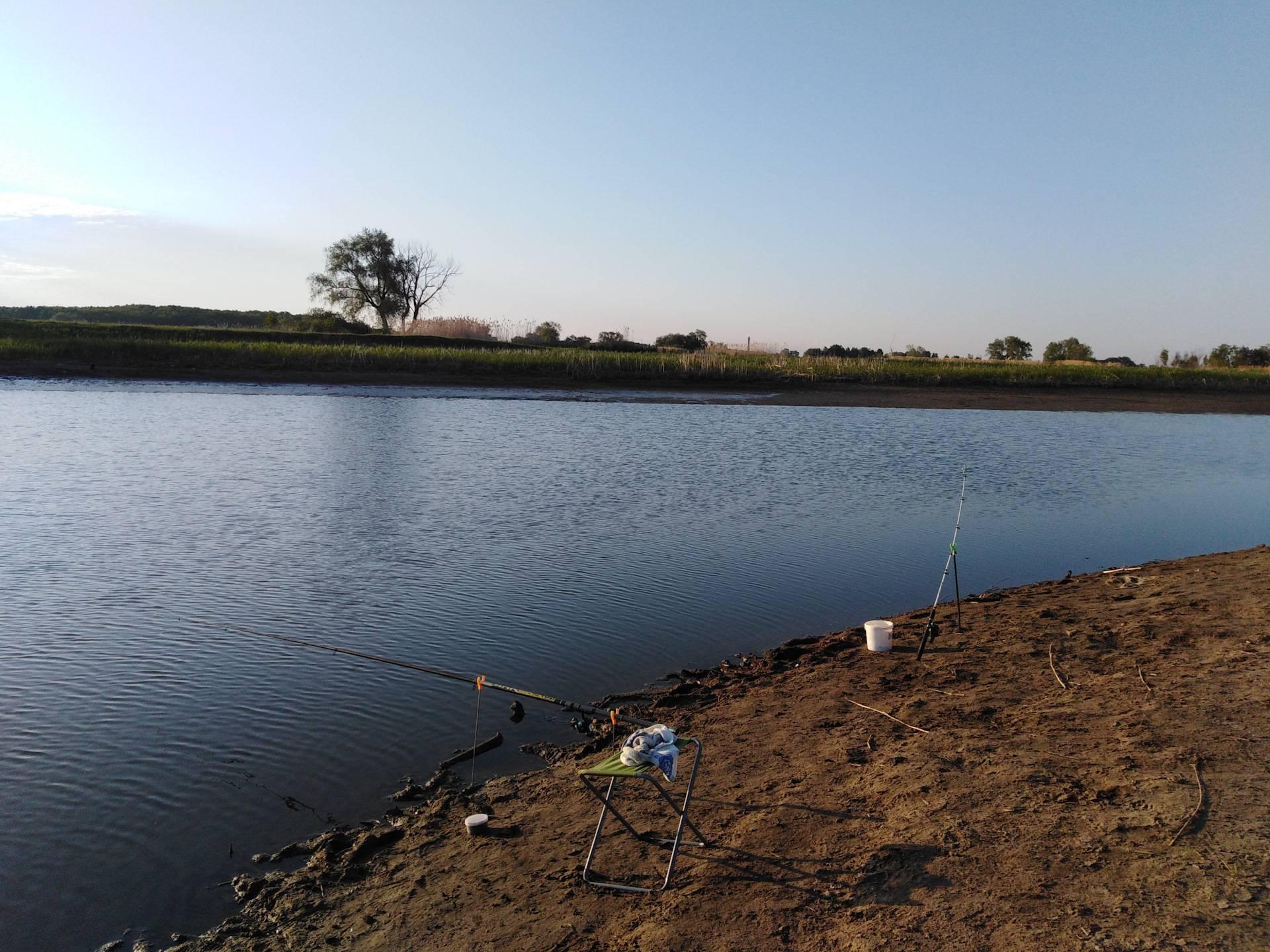Триал русская рыбалка в чеховский район подмосковья