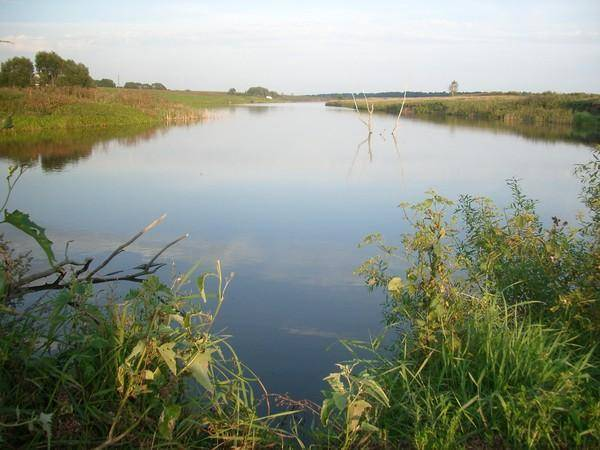 Рыбалка в орле и орловской области, ловля на прудах в сабурово, лубне, стрельной