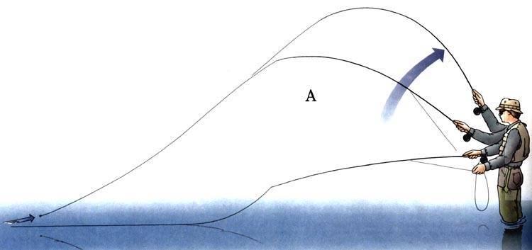 Основы нахлыстовой ловли и выбор снасти для начинающих