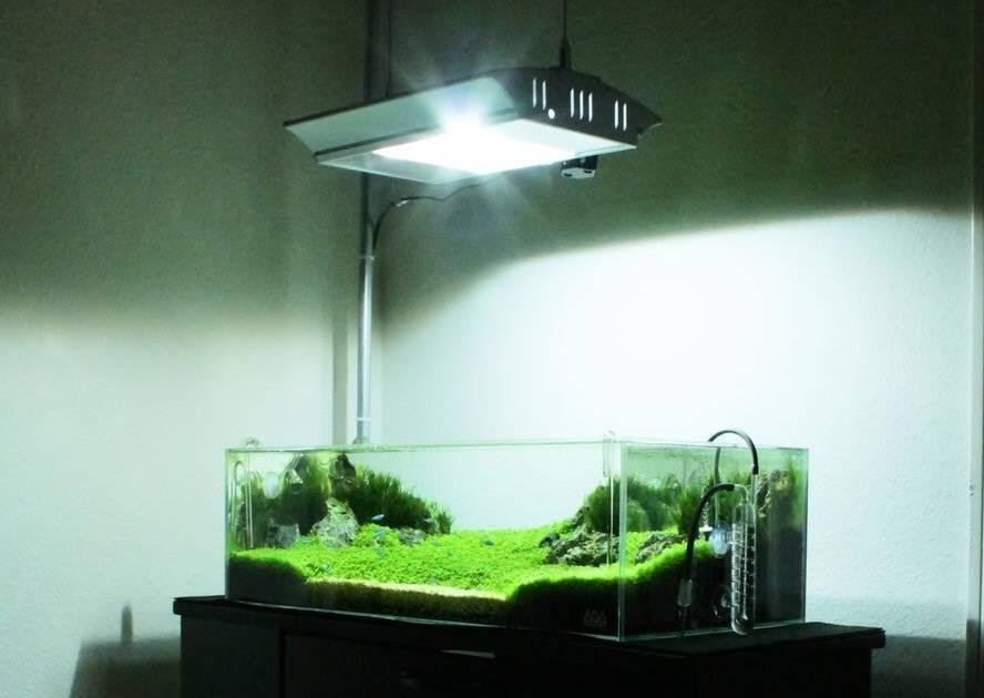 Светодиодное освещение для аквариумных растений: светодиоды и светодиодные массивы